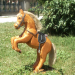 UN CHEVAL